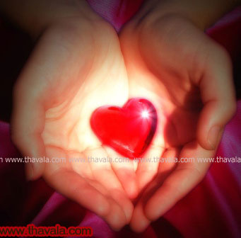 Thavala Malayalam Sad Love Images Images & Pictures - Becuo