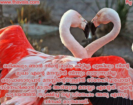 LOVE AND LOVE ONLY BOOK PDF