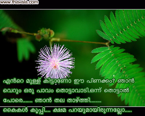 Malayalam Sad Love Letter love failure quotes in malayalam. quotesgram